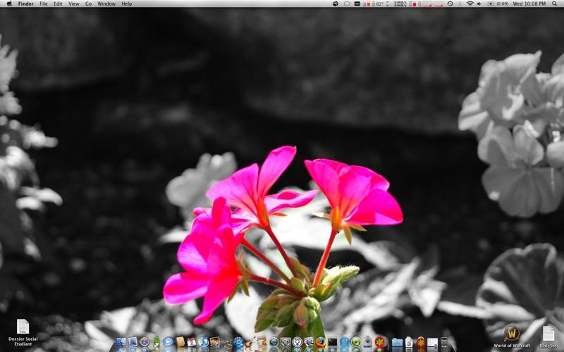 Bureau_fleur_mini.jpg